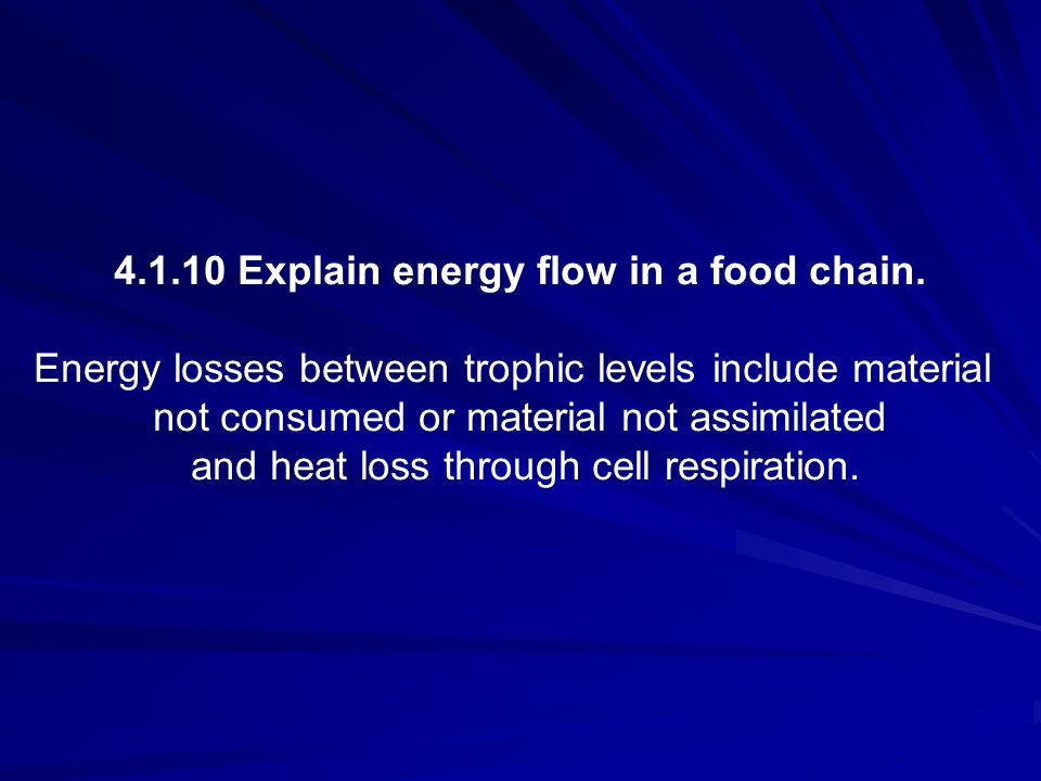 4.1.10 Explain energy flow in a food chain.