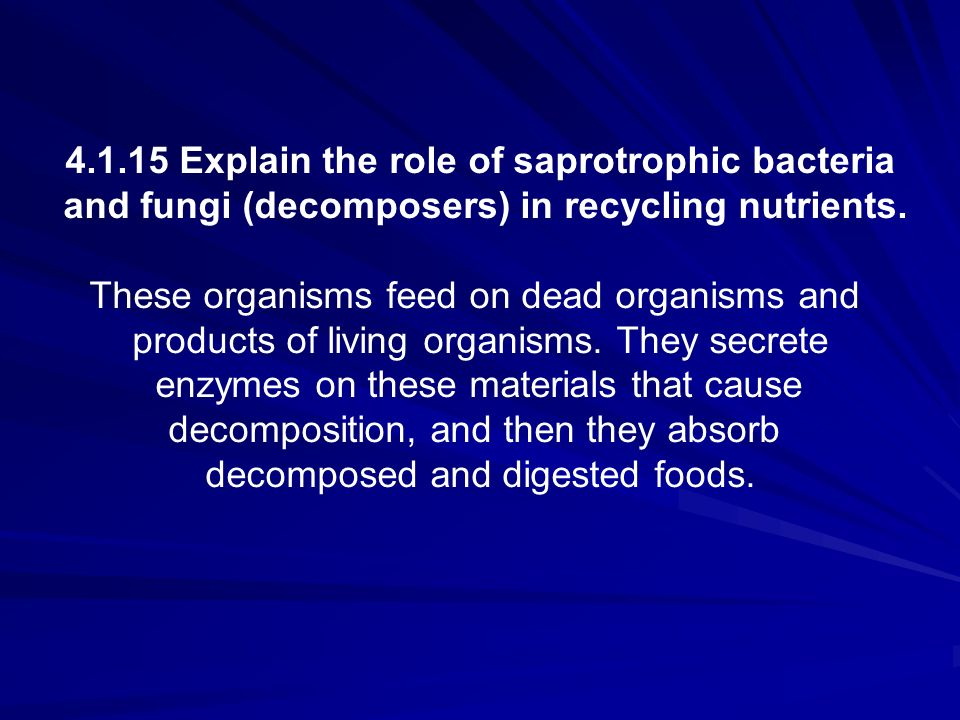 4.1.15 Explain the role of saprotrophic bacteria