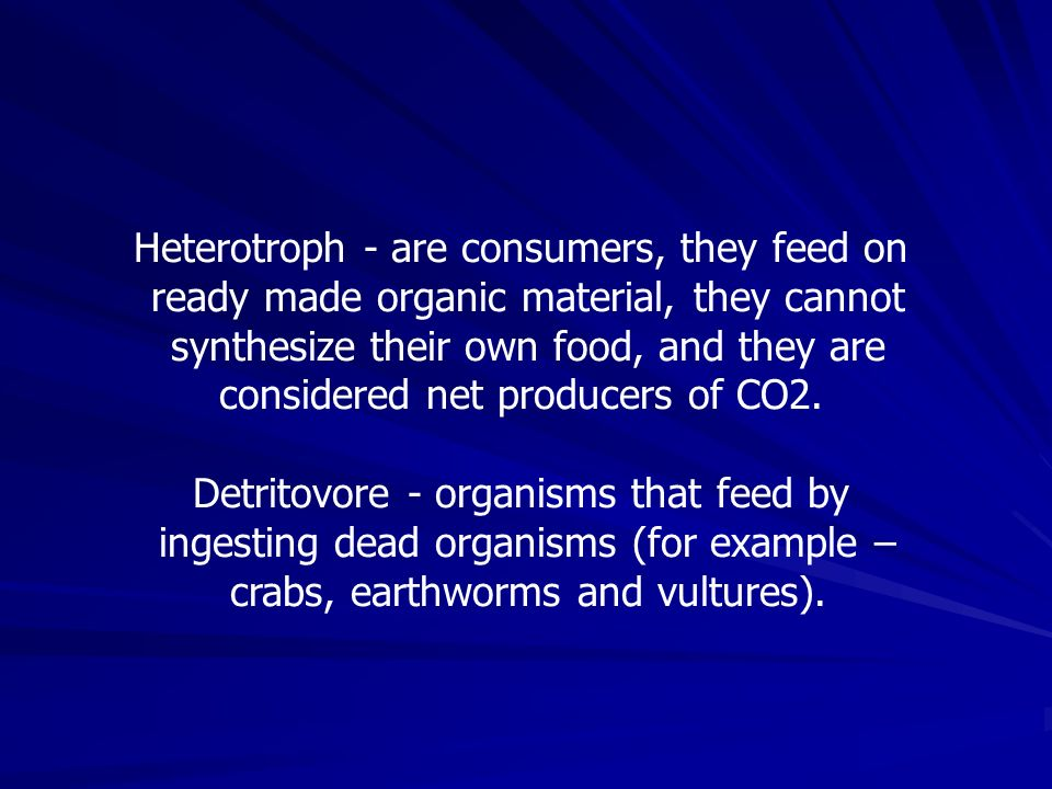 Heterotroph - are consumers, they feed on