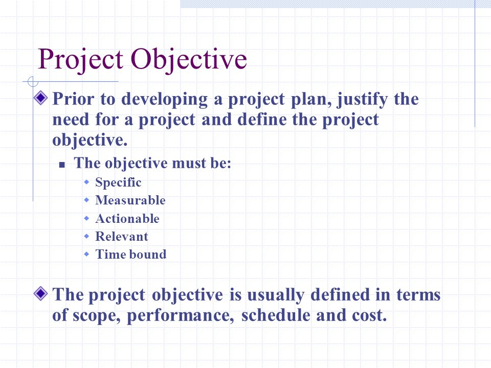 Project Objective Prior to developing a project plan, justify the need for a project and define the project objective.