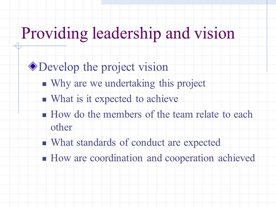 Providing leadership and vision