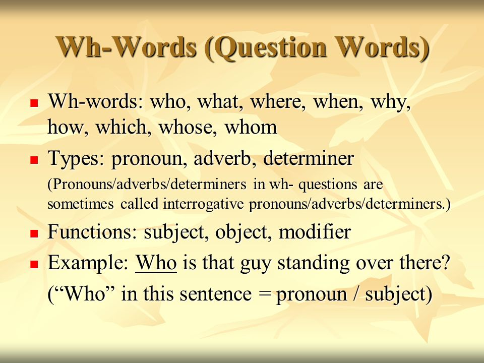 Wh-Words (Question Words)