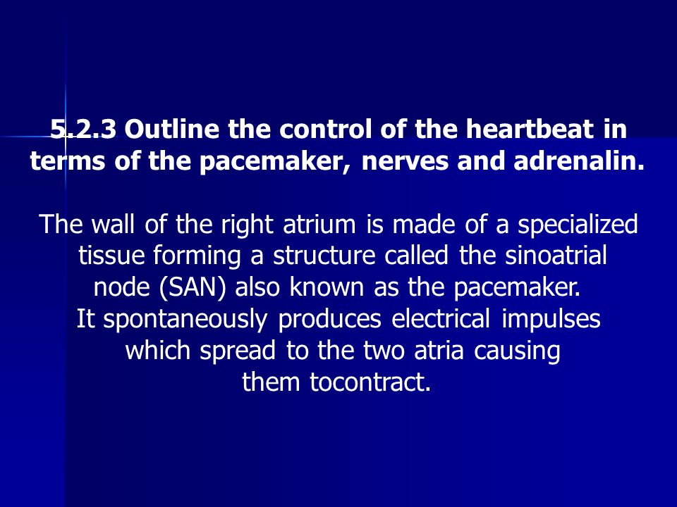 5.2.3 Outline the control of the heartbeat in
