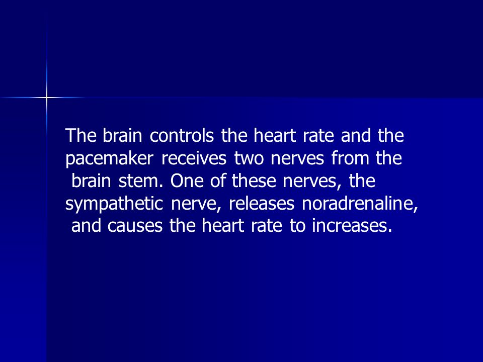 The brain controls the heart rate and the