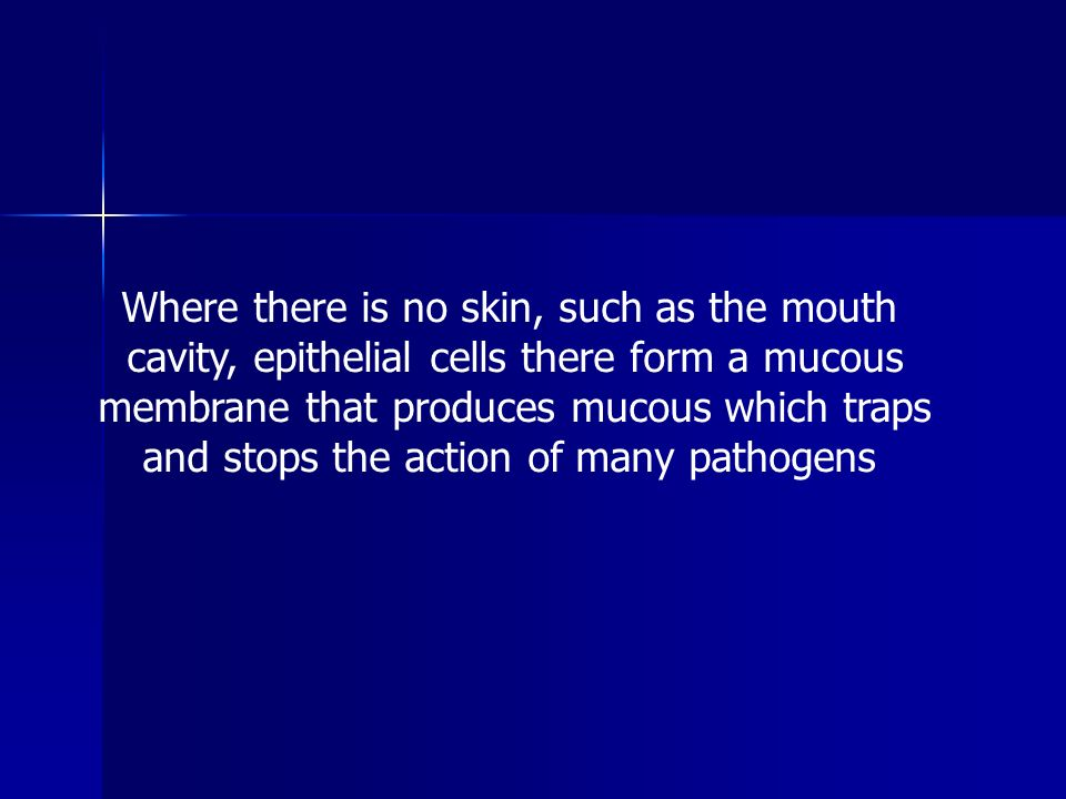 Where there is no skin, such as the mouth