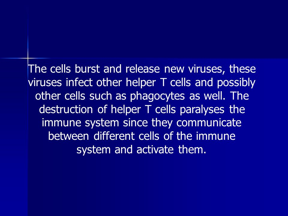 The cells burst and release new viruses, these