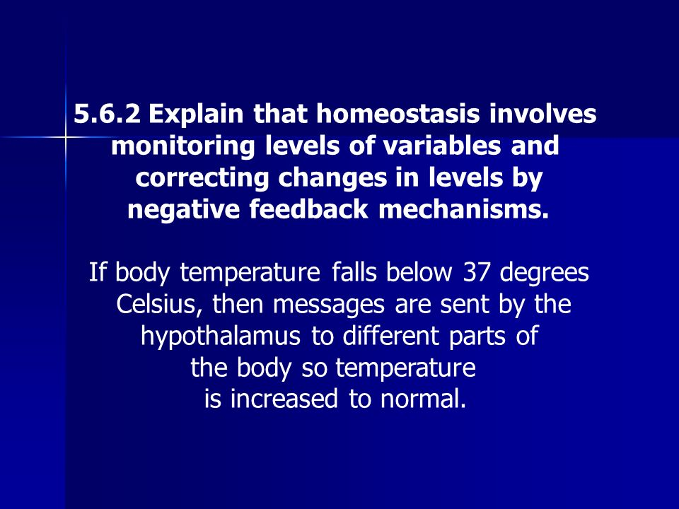 5.6.2 Explain that homeostasis involves