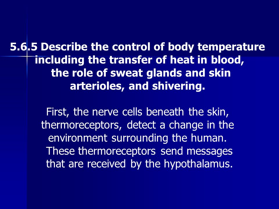 5.6.5 Describe the control of body temperature