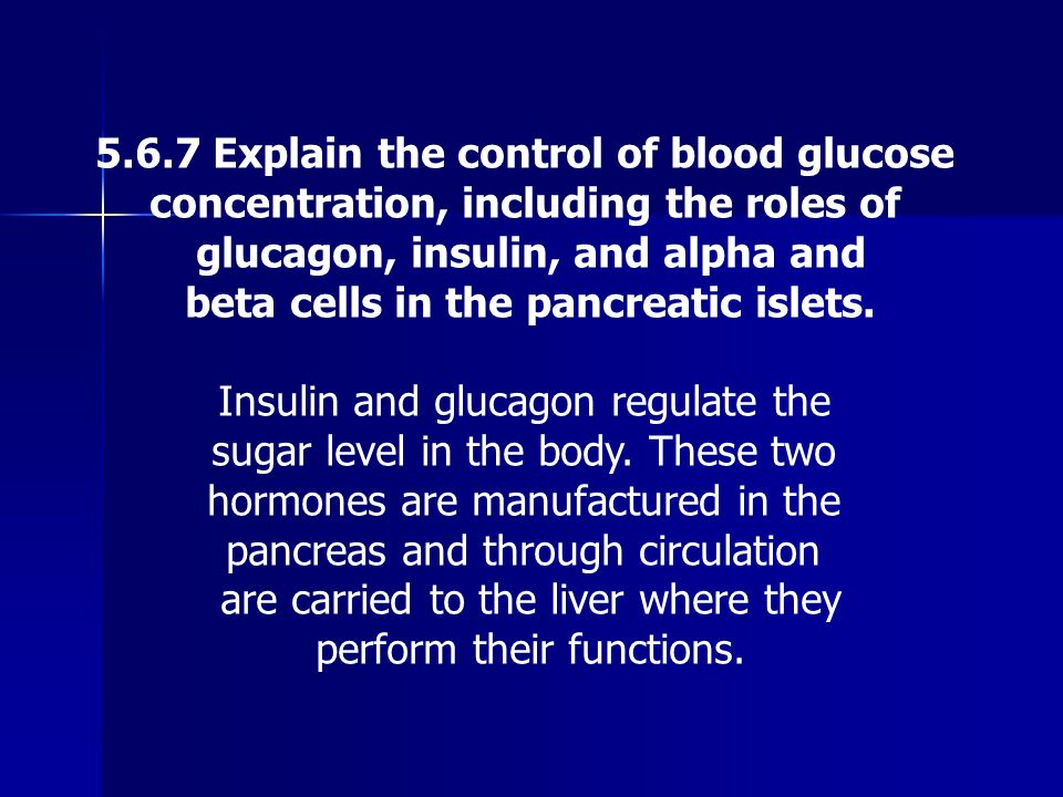 5.6.7 Explain the control of blood glucose