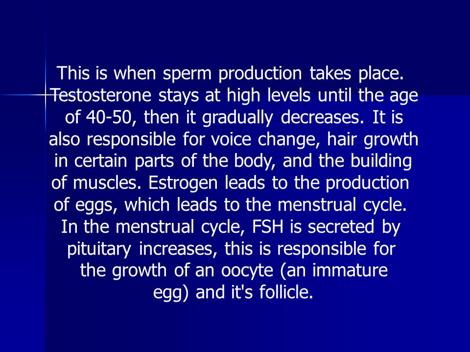 This is when sperm production takes place.