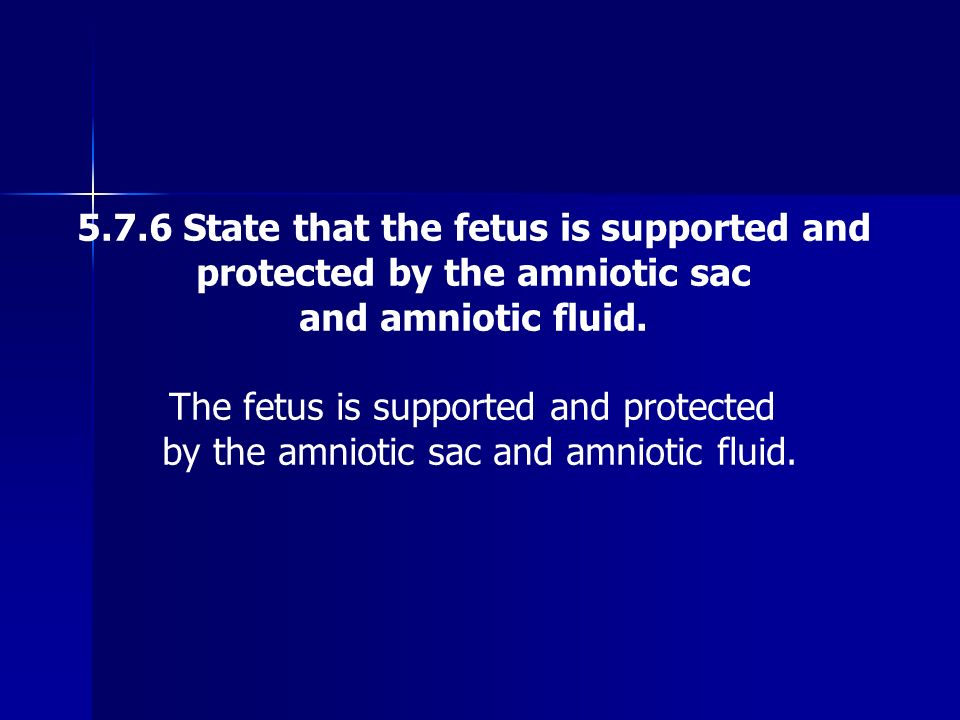 5.7.6 State that the fetus is supported and