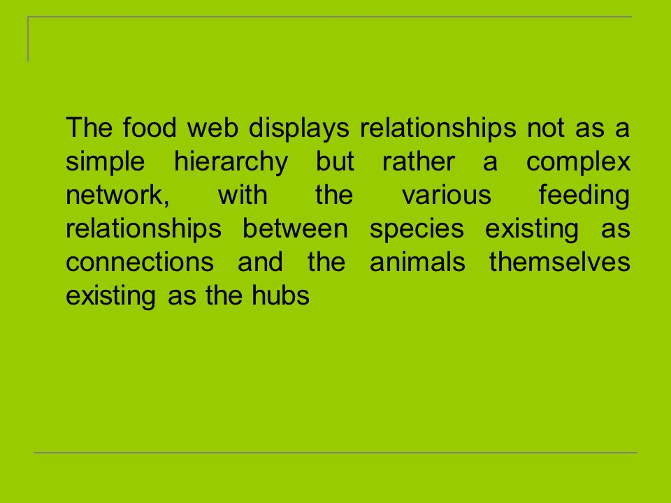 The food web displays relationships not as a simple hierarchy but rather a complex network, with the various feeding relationships between species existing as connections and the animals themselves existing as the hubs