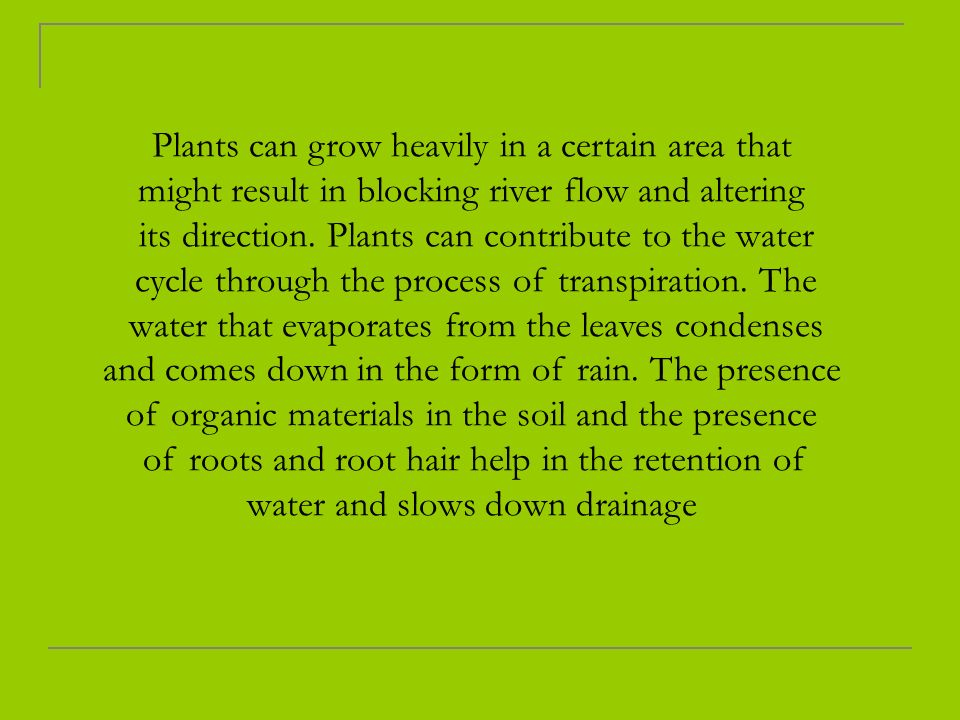 Plants can grow heavily in a certain area that