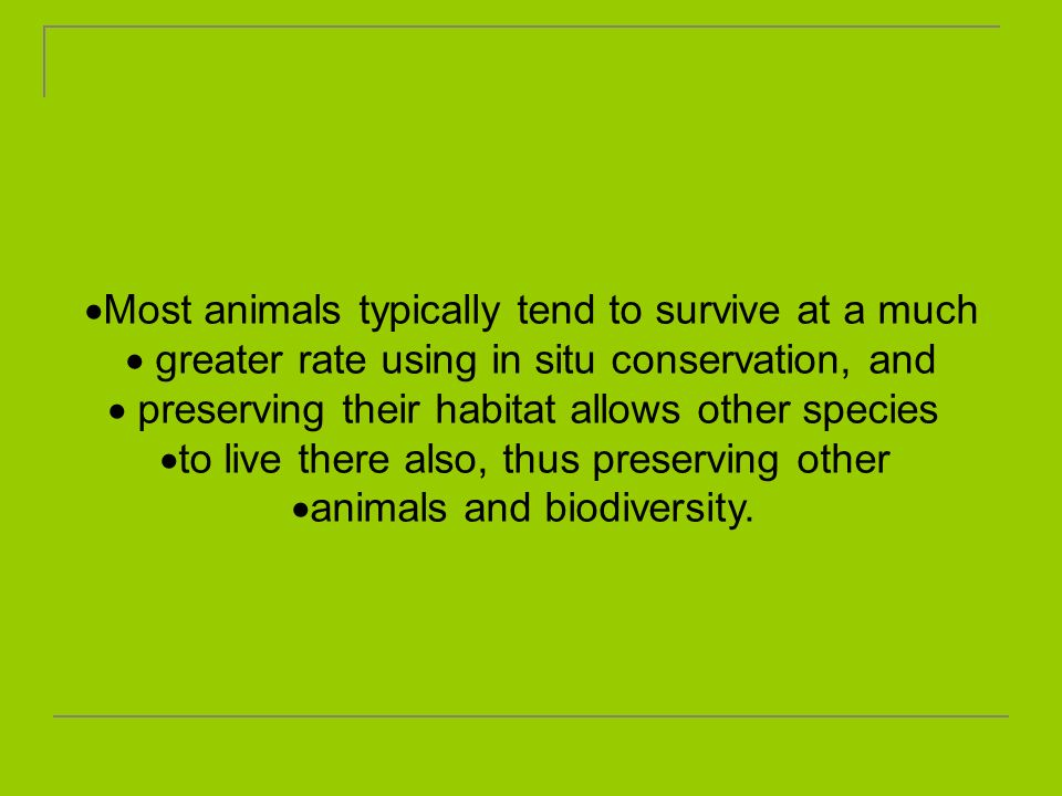 Most animals typically tend to survive at a much