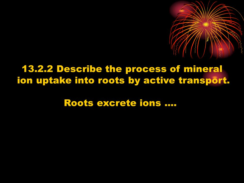 Describe the process of mineral