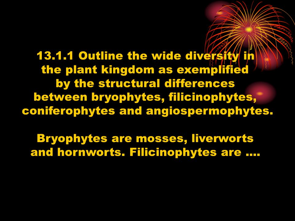 13.1.1 Outline the wide diversity in the plant kingdom as exemplified