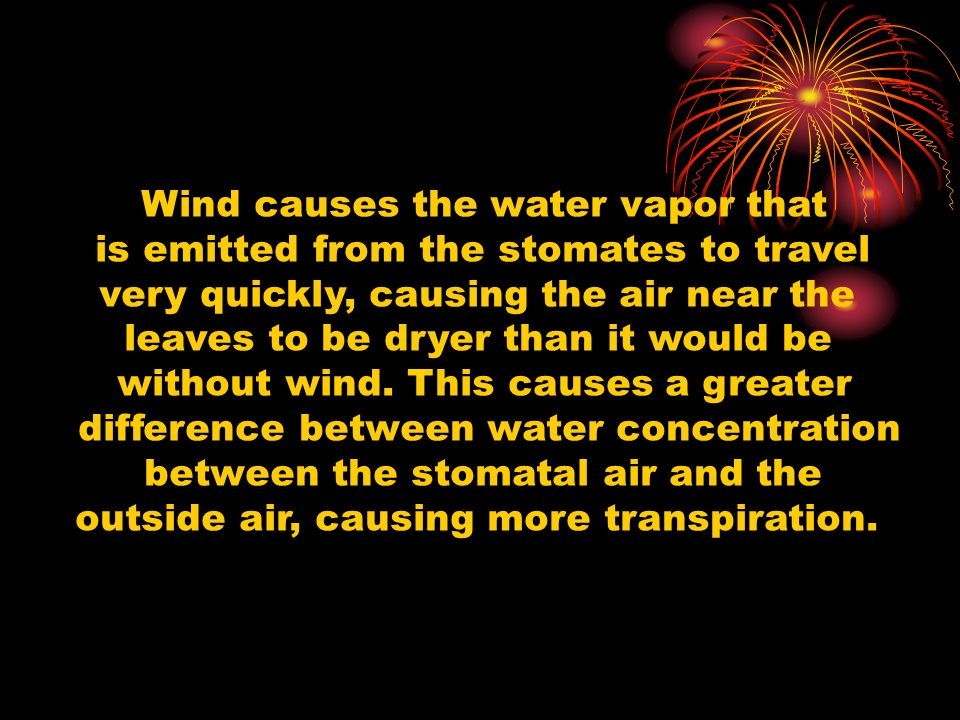 Wind causes the water vapor that