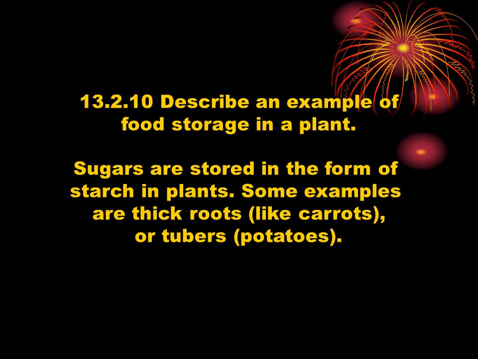 Sugars are stored in the form of starch in plants. Some examples