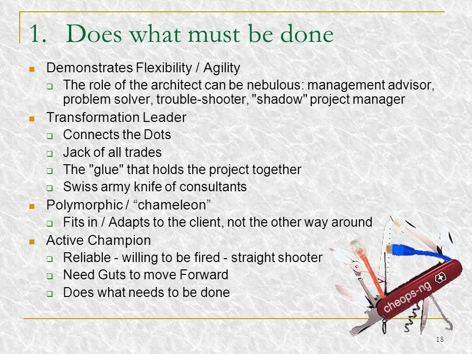 Does what must be done Demonstrates Flexibility / Agility