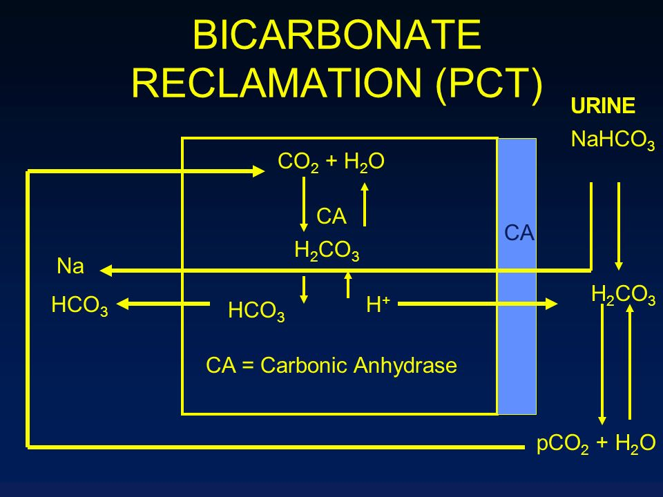 BICARBONATE RECLAMATION (PCT)