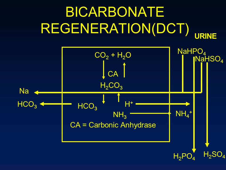 BICARBONATE REGENERATION(DCT)