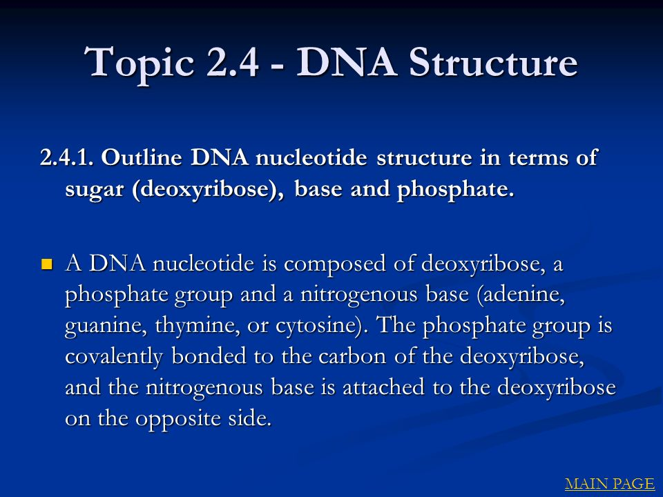 Topic DNA Structure Outline DNA nucleotide structure in terms of sugar (deoxyribose), base and phosphate.
