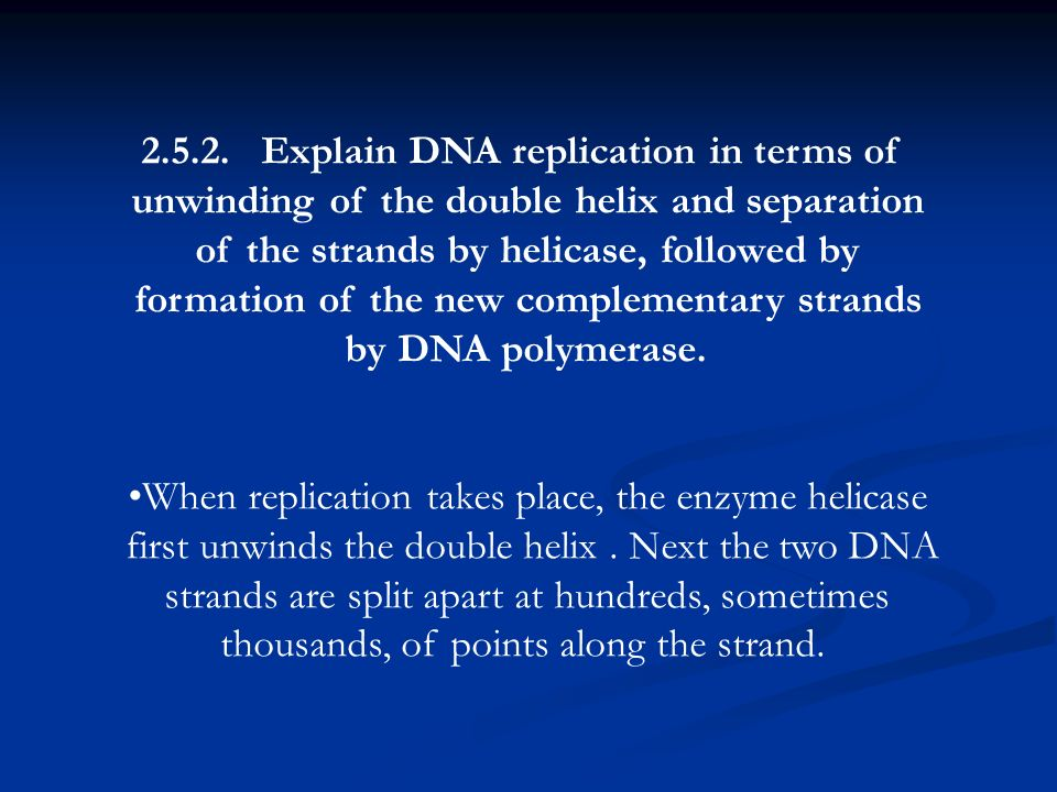 Explain DNA replication in terms of