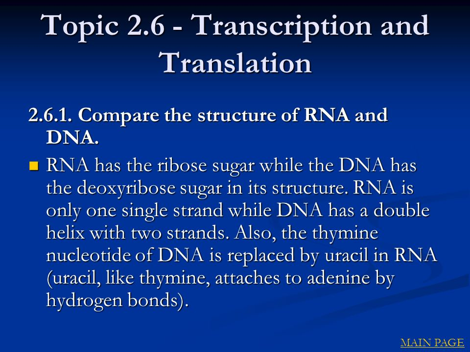 Topic 2.6 - Transcription and Translation