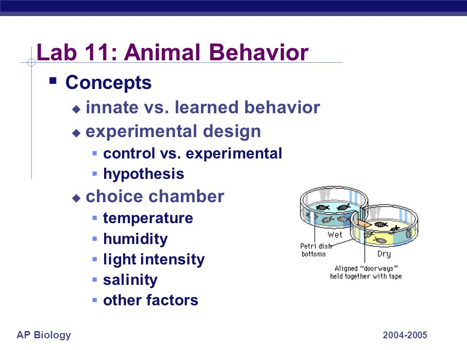 Lab 11: Animal Behavior Concepts innate vs. learned behavior
