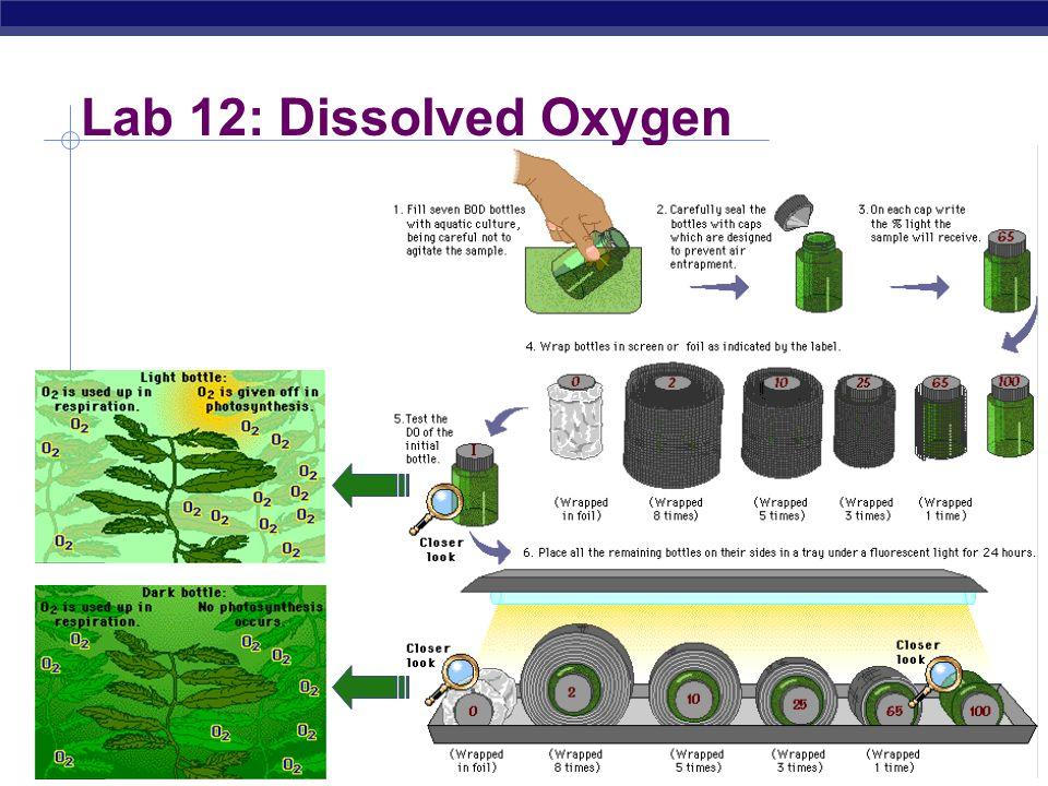 Lab 12: Dissolved Oxygen 2004-2005