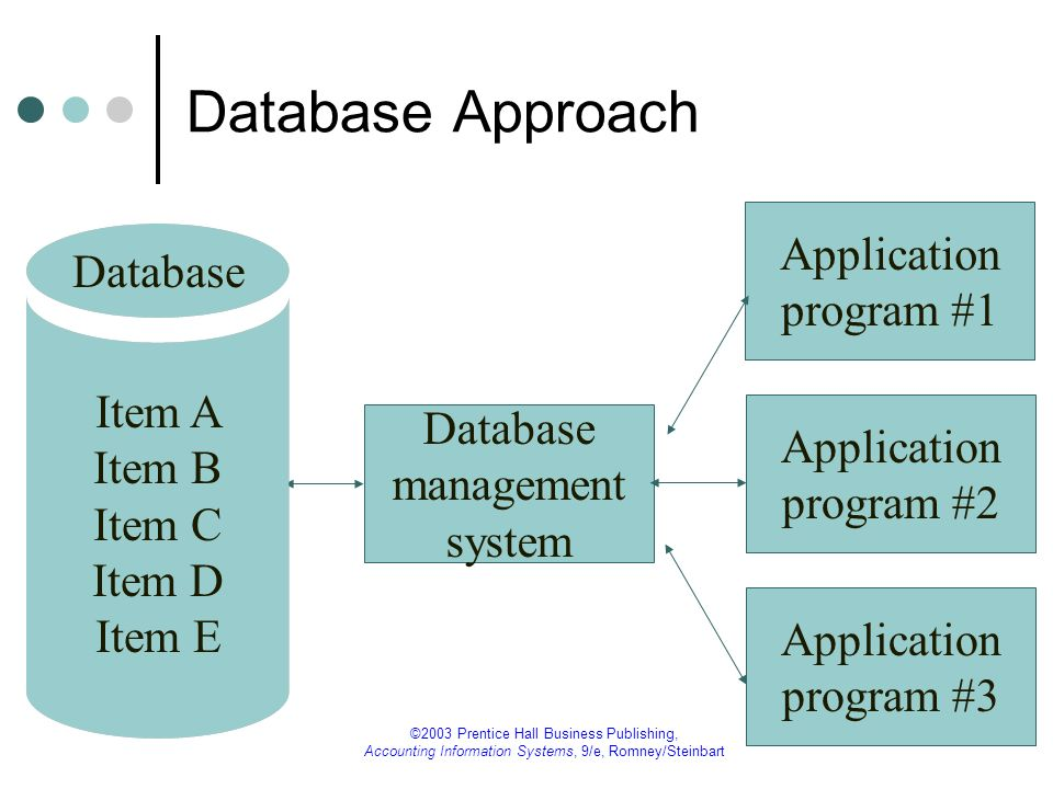 Database Approach Application Database program #1
