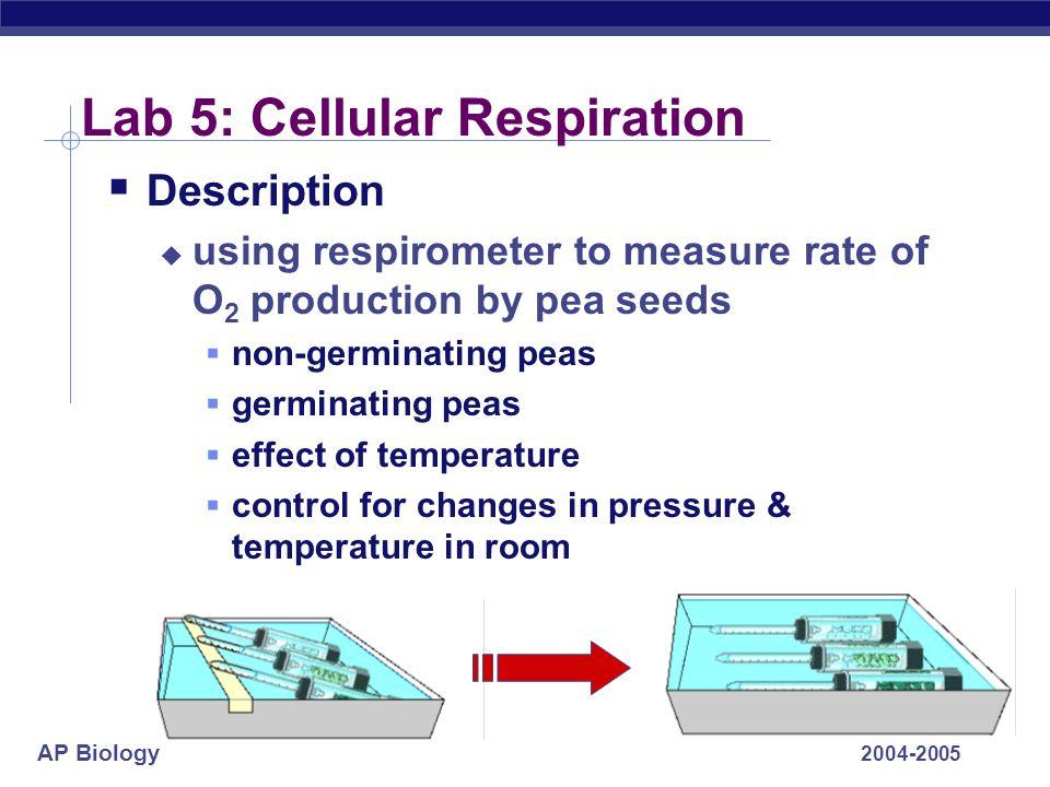 Lab 5: Cellular Respiration