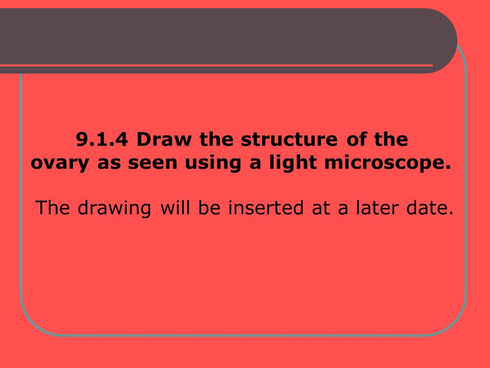 9.1.4 Draw the structure of the