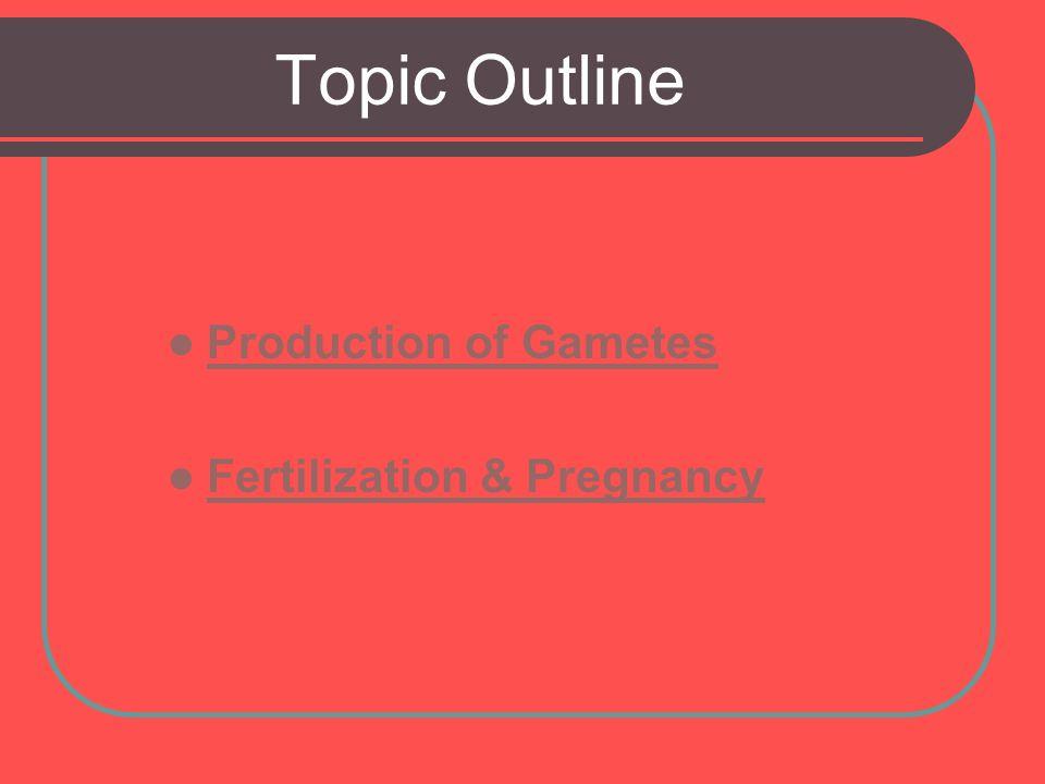 Topic Outline Production of Gametes Fertilization & Pregnancy
