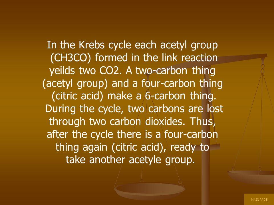In the Krebs cycle each acetyl group