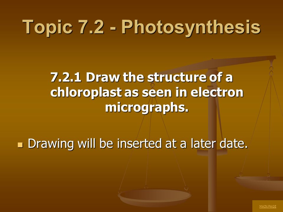Topic 7.2 - Photosynthesis