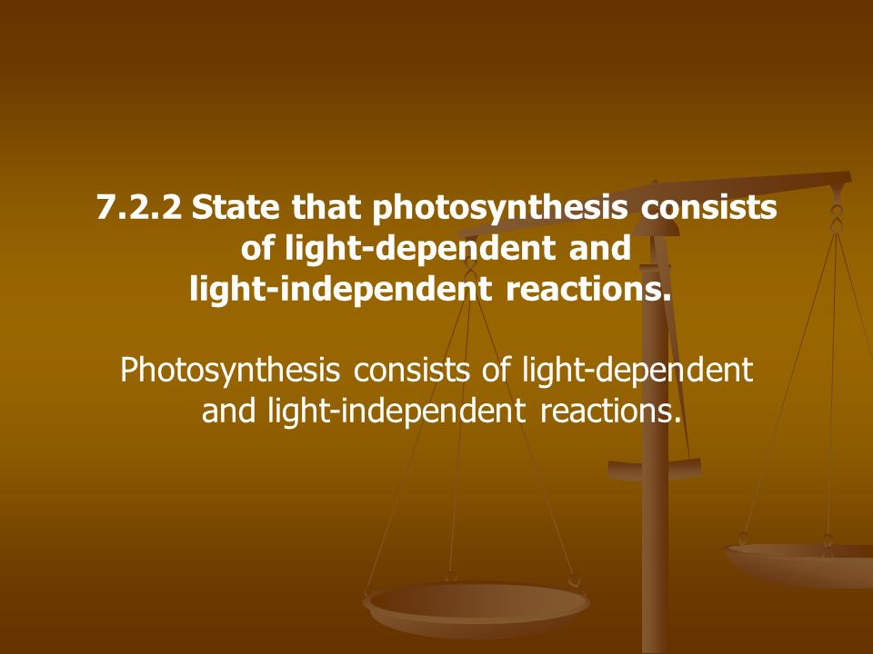 7.2.2 State that photosynthesis consists of light-dependent and