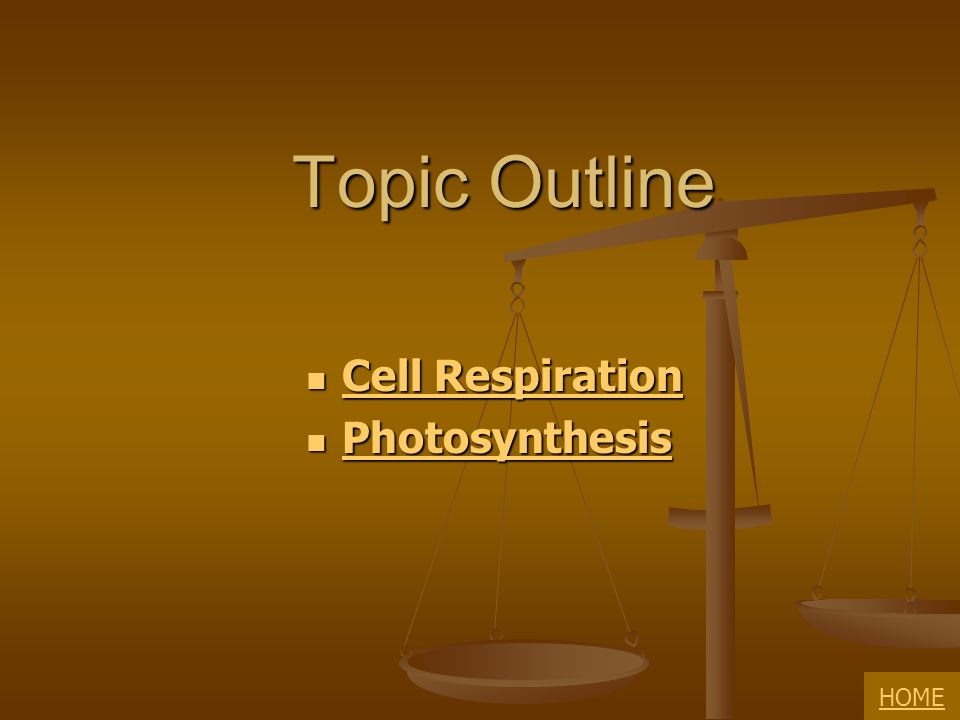 Topic Outline Cell Respiration Photosynthesis HOME