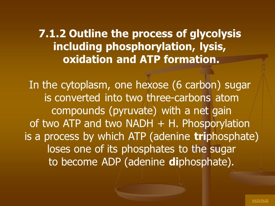 7.1.2 Outline the process of glycolysis