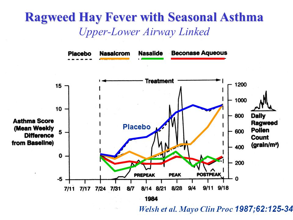 Ragweed Hay Fever with Seasonal Asthma Upper-Lower Airway Linked