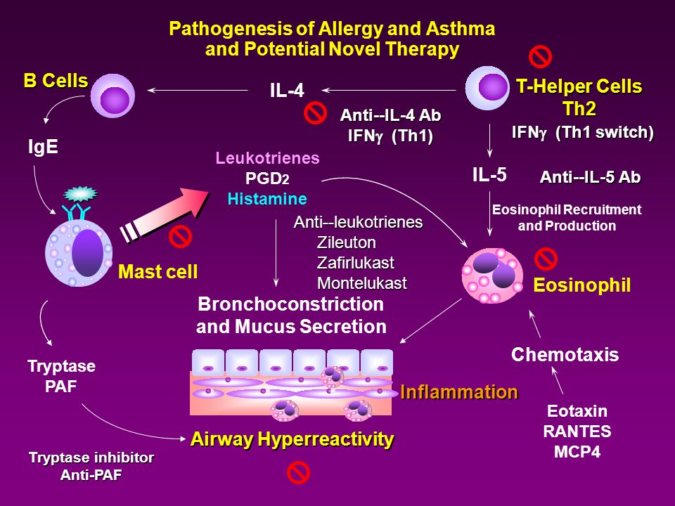 Pathogenesis of Allergy and Asthma and Potential Novel Therapy