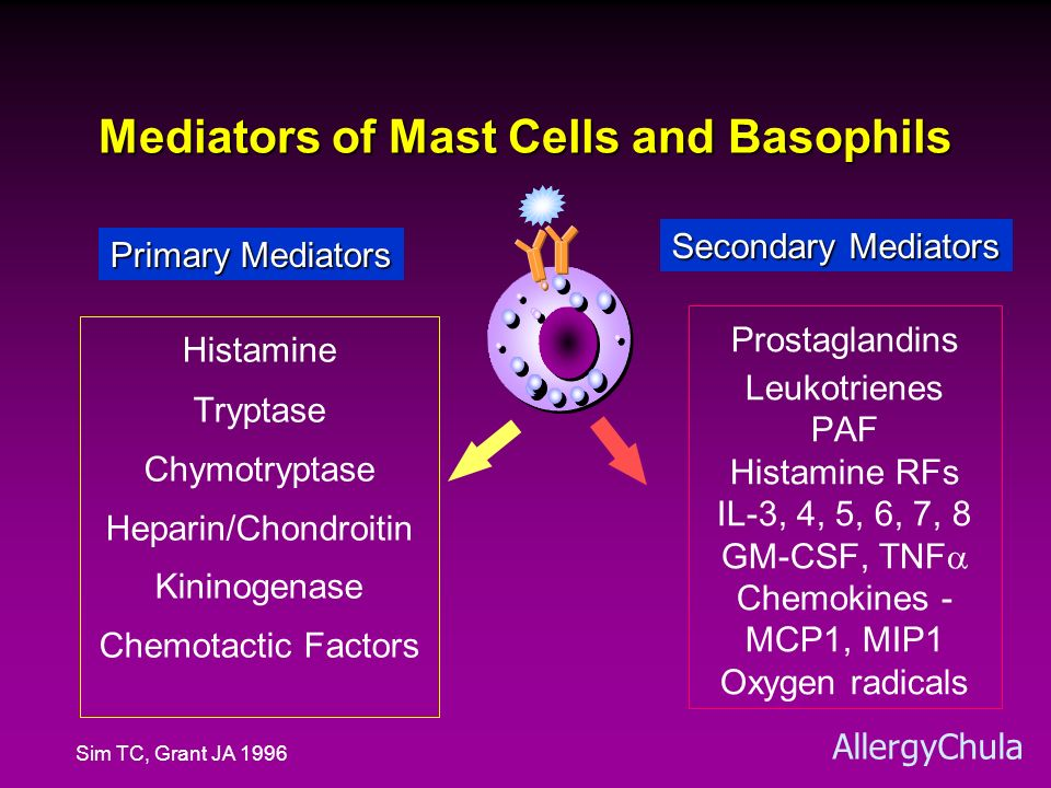 Mediators of Mast Cells and Basophils