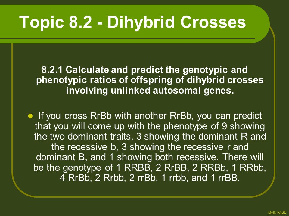 Topic 8.2 - Dihybrid Crosses