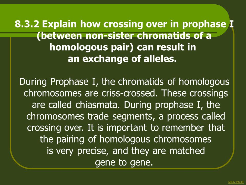 8.3.2 Explain how crossing over in prophase I