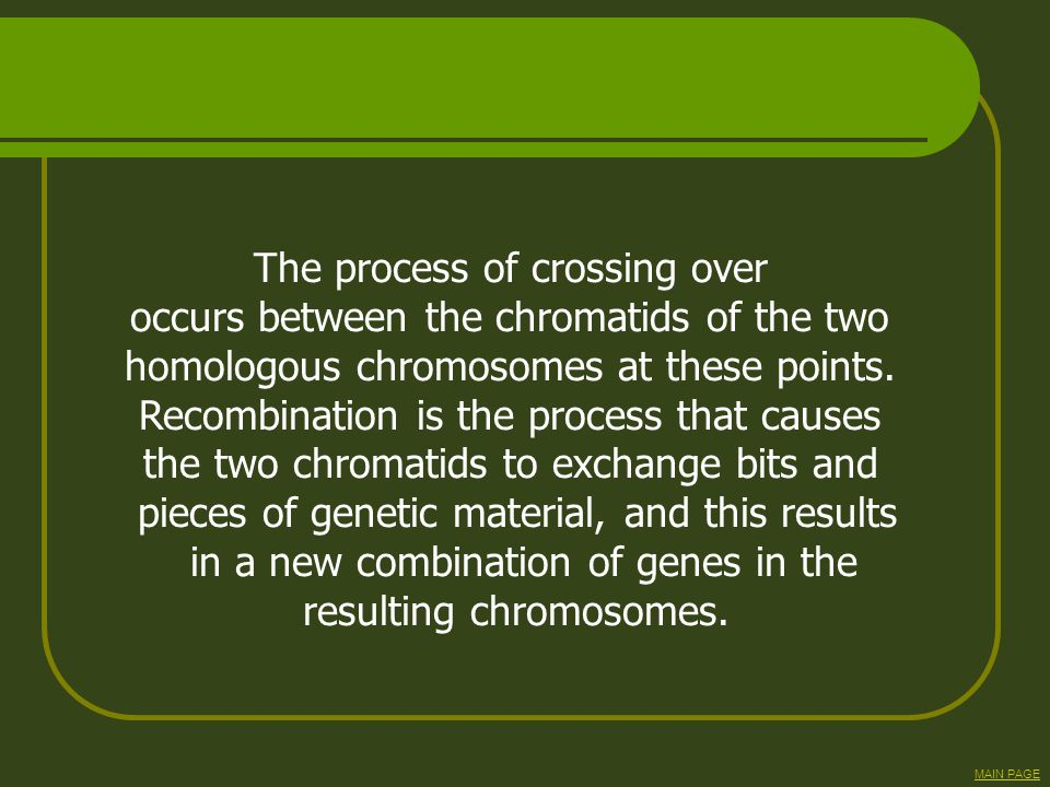 The process of crossing over occurs between the chromatids of the two
