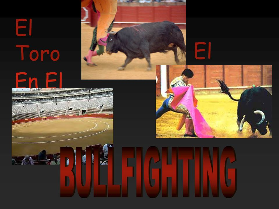 El Toro El Torero En El Estadio BULLFIGHTING