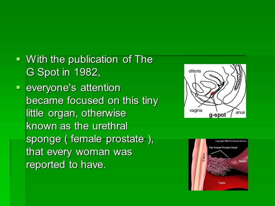 With the publication of The G Spot in 1982,