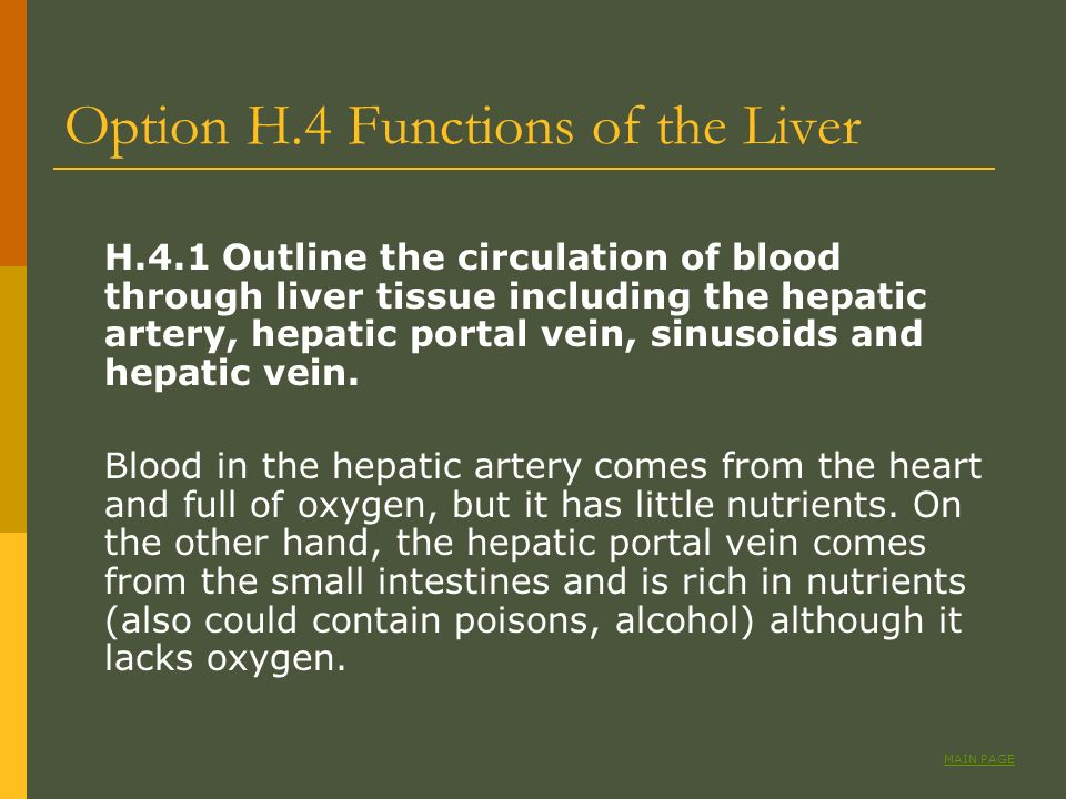 Option H.4 Functions of the Liver
