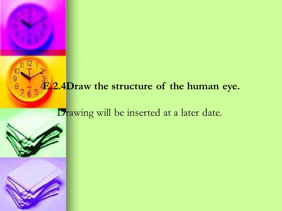 E.2.4Draw the structure of the human eye.