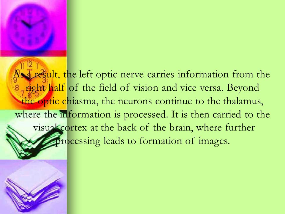 As a result, the left optic nerve carries information from the